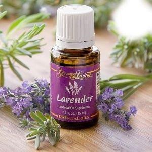 lavendereo2