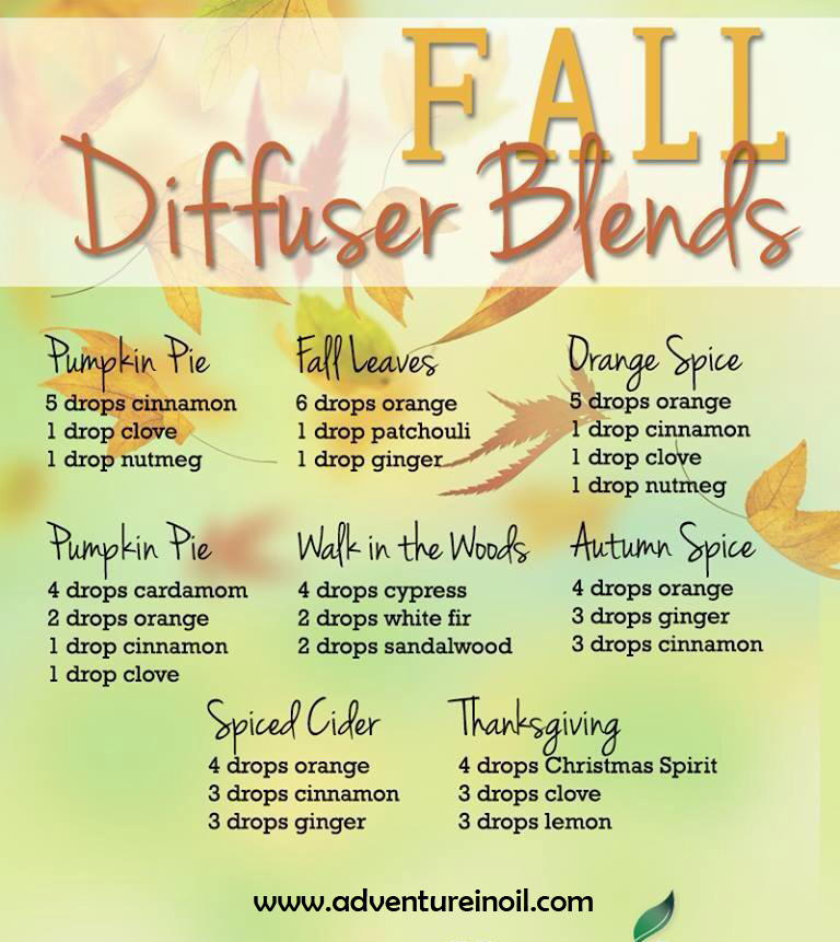 1-Fall Diffuser Blends